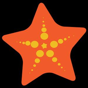 Starfish Label icon png