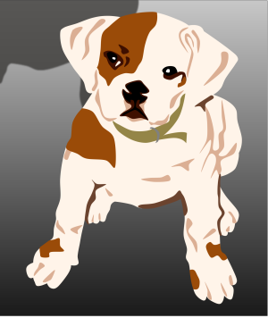 Bulldog Puppy icon png