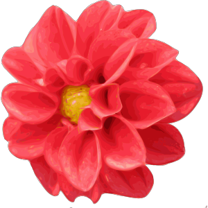 Dahlia Rose icon png