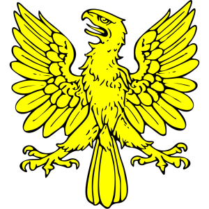 Eagle 24 icon png