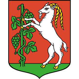 Lublin Coat Of Arms icon png