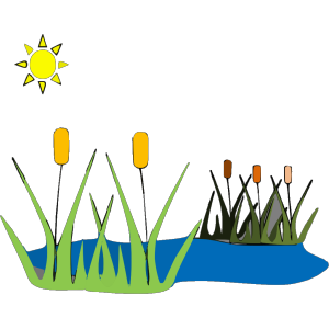 Pond C icon png