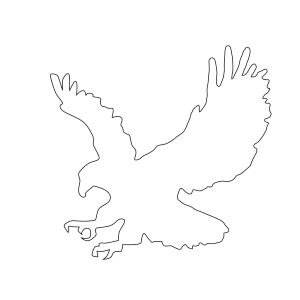 Bald Eagle icon png