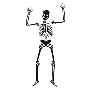 Scary Skeleton icon png