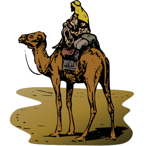 Person Riding Camel icon png