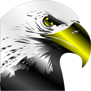 Bald Eagle icon png