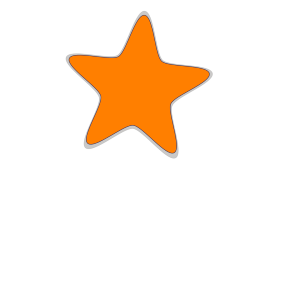 Star Penguin icon png