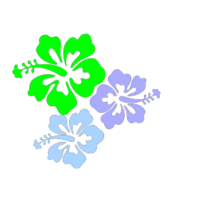 Hibiscus Flower 6 icon png