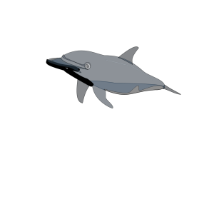 Dolphin 2 icon png