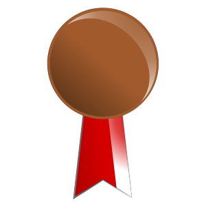 Bronze Medal icon png