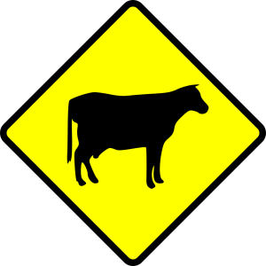 Traffic Signal icon png