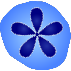 Sand Dollar icon png