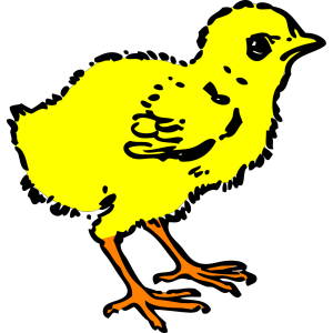 Chick In Color icon png