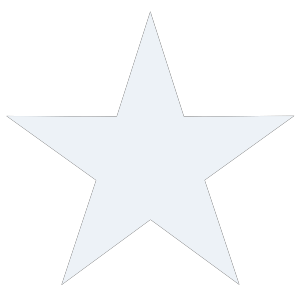 Black & White Starfish icon png