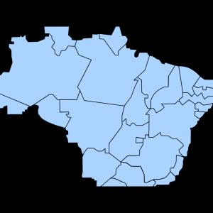 Brasil  2010 design