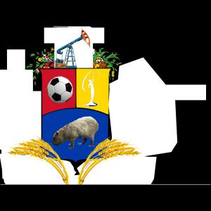 Venezuela Flag icon png