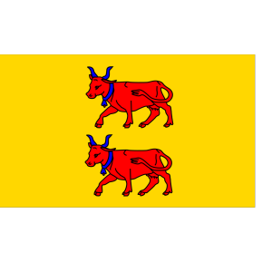 Flag Of Bearn icon png