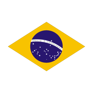 Flag Of Brazil icon png