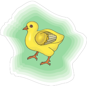 Baby Chick With Green Background icon png
