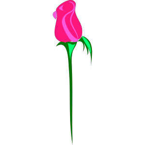 Pink Rose icon png