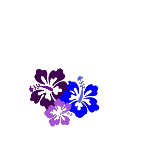Hibiscus 23 icon png