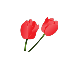 Red Tulip icon png