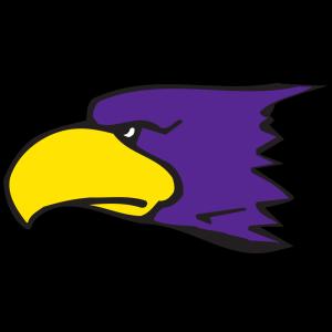 Cartoon Eagle Head icon png