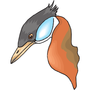 Long Necked Duck Head icon png