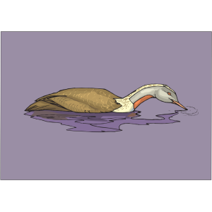Eating Duck In Water icon png