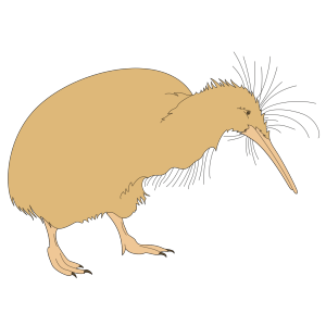 Fuzzy Kiwi Bird icon png