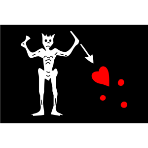 Pirate Flag icon png