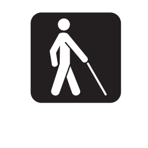 Low Vision Access Black icon png
