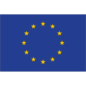 Flag Of Eu design