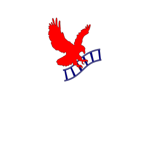 Eagle Film icon png