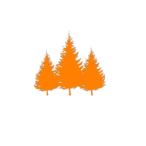 Forest Trees Oberzeiring2004 icon png