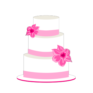 Wedding Cake icon png