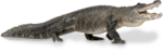 Alligator Download PNG Image icon png