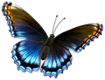 Amazing Butterfly PNG icon png