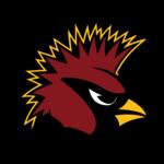 Arizona Cardinals PNG Image icon png