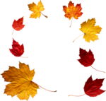 Autumn Leaf PNG icon png