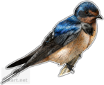 Barn Swallow PNG File icon png