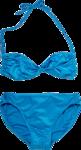 Bikini PNG Image icon png