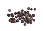 Black Pepper PNG Picture icon png