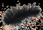 Black PNG Transparent icon png