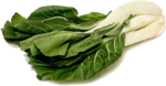 Bok Choy PNG File icon png