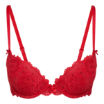 Bra Background PNG icon png