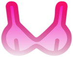 Bra PNG Pic icon png