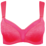 Bra PNG Transparent HD Photo icon png