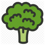 Broccoli PNG Download Image icon png