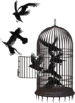 Cage PNG Picture icon png